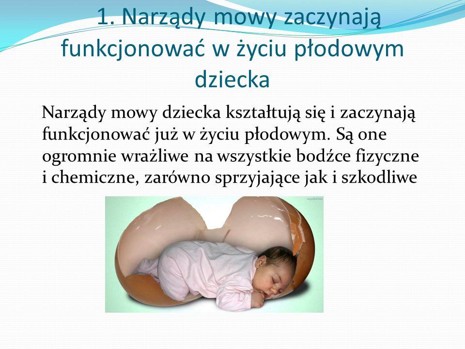 1. Narządy mowy zaczynają funkcjonować w życiu płodowym dziecka