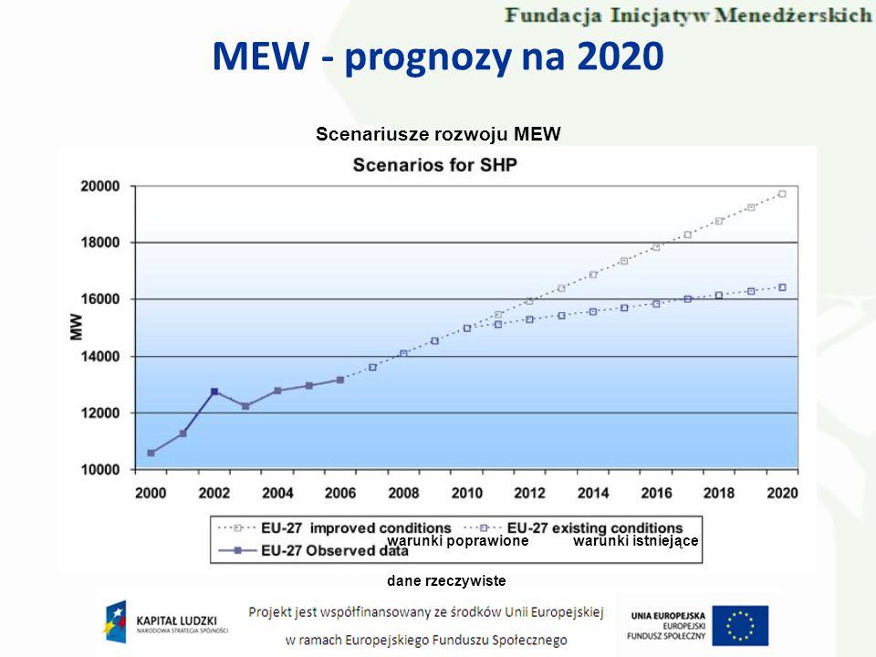MEW - prognozy na 2020 Scenariusze rozwoju MEW