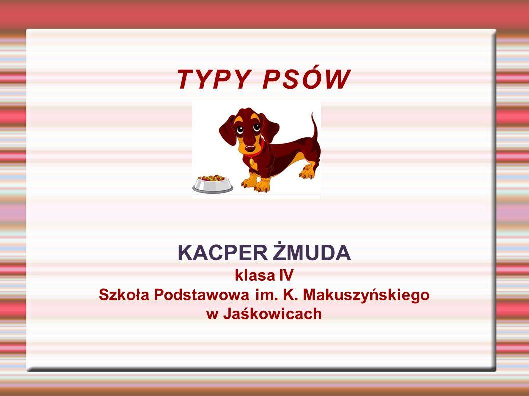 Szkoła Podstawowa im. K. Makuszyńskiego