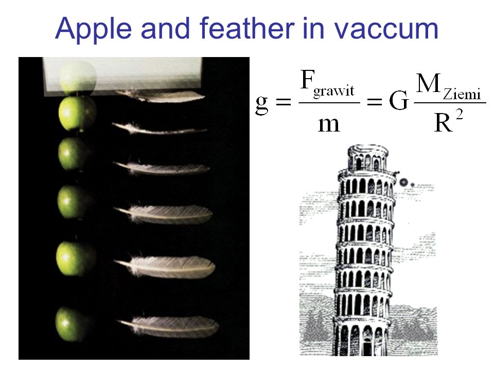 Apple and feather in vaccum