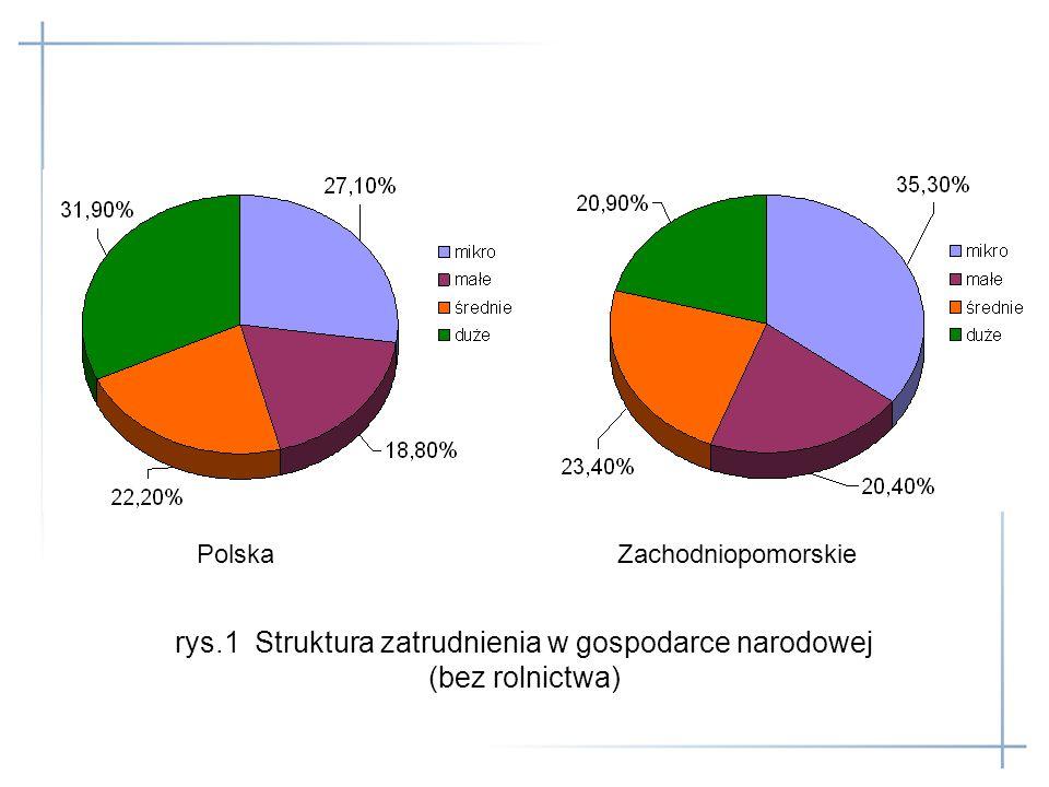 rys.1 Struktura zatrudnienia w gospodarce narodowej