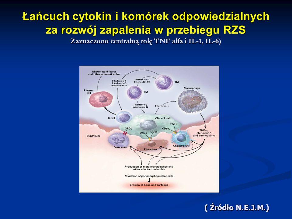 Łańcuch cytokin i komórek odpowiedzialnych za rozwój zapalenia w przebiegu RZS Zaznaczono centralną rolę TNF alfa i IL-1, IL-6)