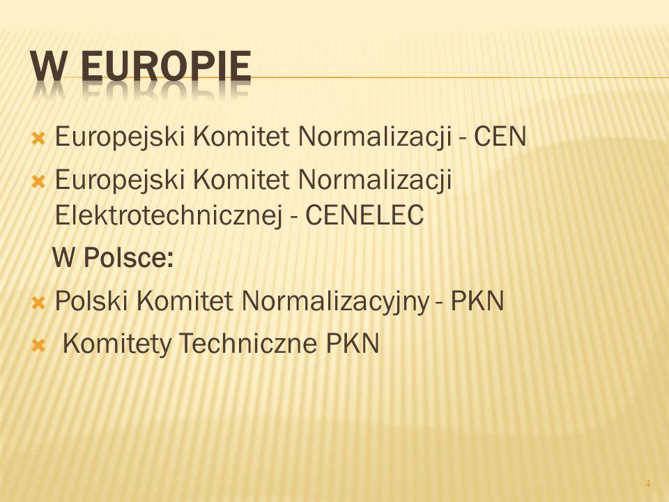 W Europie Europejski Komitet Normalizacji - CEN