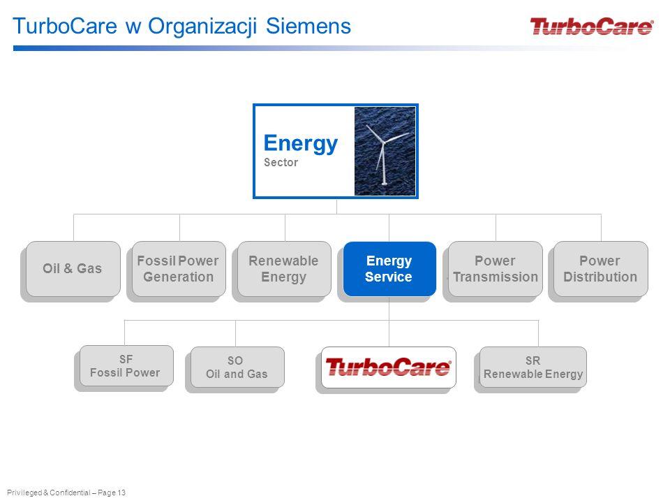 TurboCare w Organizacji Siemens