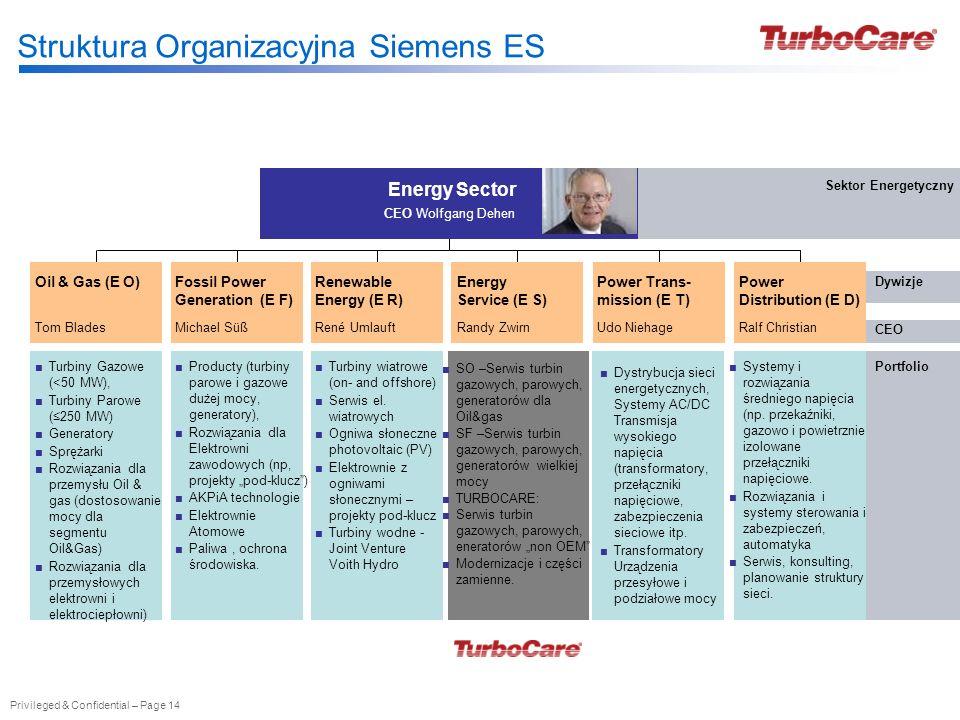 Struktura Organizacyjna Siemens ES