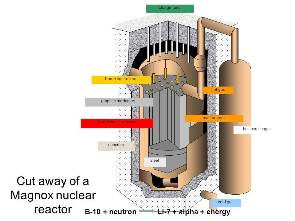 Cut away of a Magnox nuclear reactor
