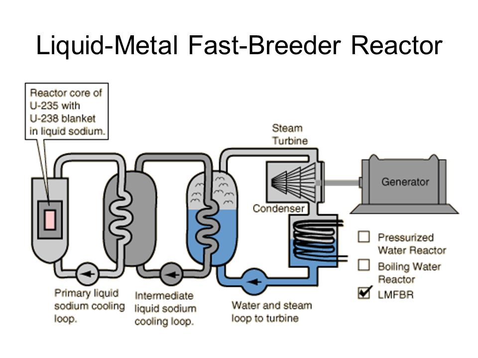 Liquid-Metal Fast-Breeder Reactor