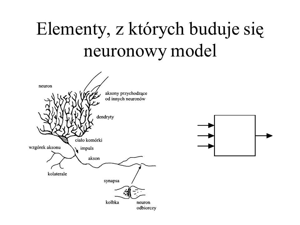 Elementy, z których buduje się neuronowy model