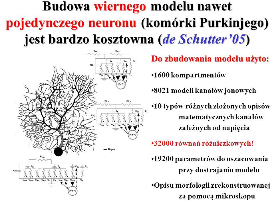 Budowa wiernego modelu nawet pojedynczego neuronu (komórki Purkinjego) jest bardzo kosztowna (de Schutter'05)