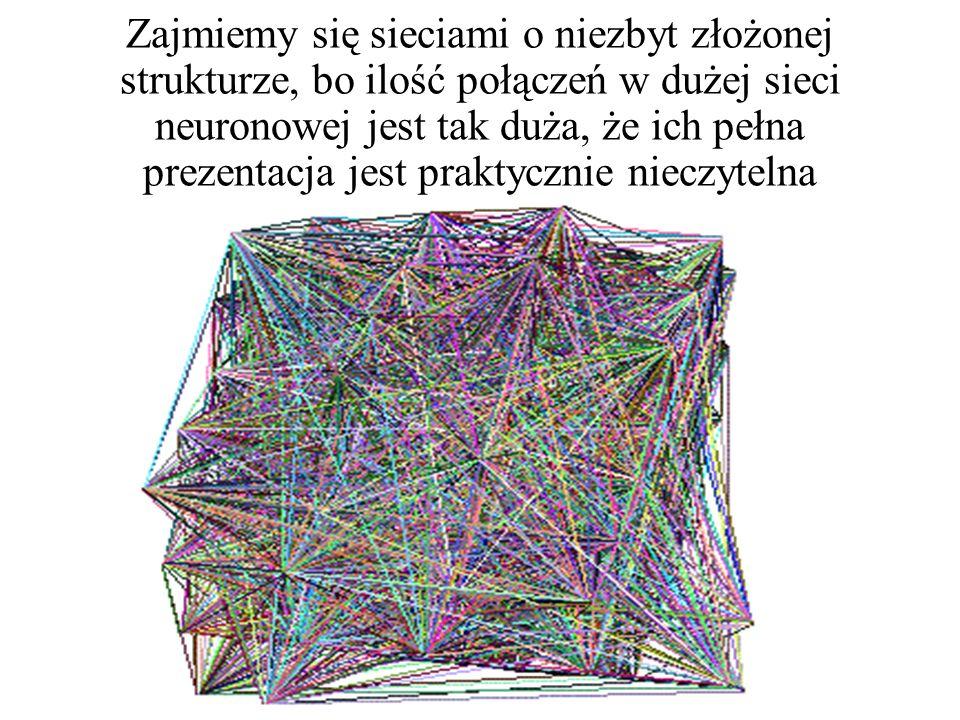 Zajmiemy się sieciami o niezbyt złożonej strukturze, bo ilość połączeń w dużej sieci neuronowej jest tak duża, że ich pełna prezentacja jest praktycznie nieczytelna