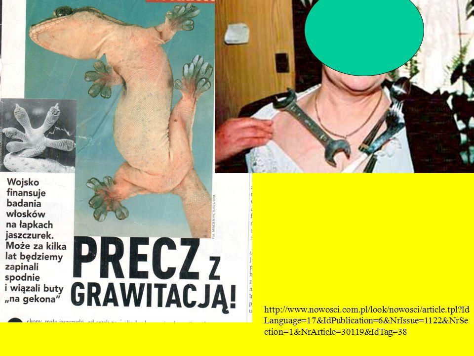 http://www. nowosci. com. pl/look/nowosci/article. tpl