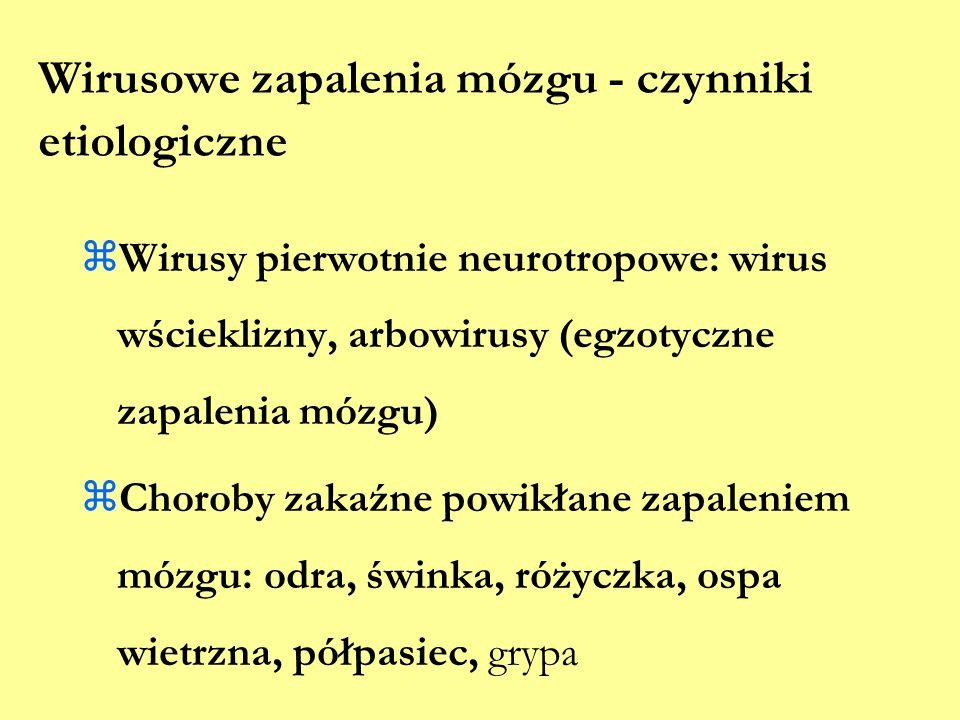 Wirusowe zapalenia mózgu - czynniki etiologiczne