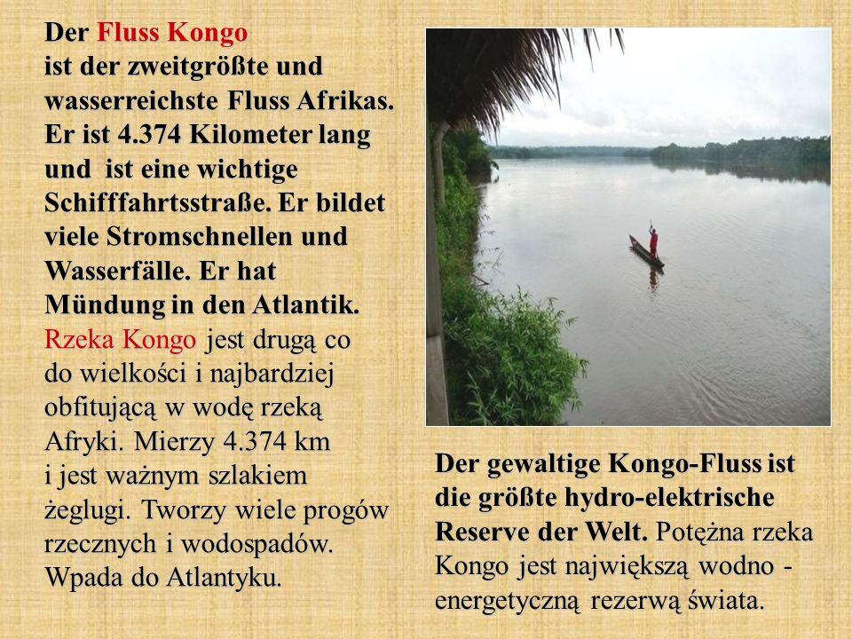 Der Fluss Kongo ist der zweitgrößte und wasserreichste Fluss Afrikas