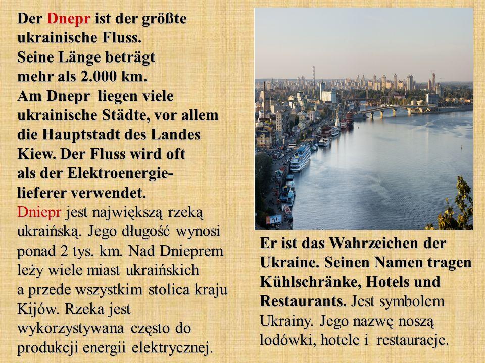 Der Dnepr ist der größte ukrainische Fluss