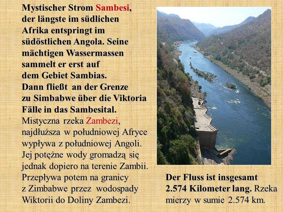 Mystischer Strom Sambesi, der längste im südlichen Afrika entspringt im südöstlichen Angola. Seine mächtigen Wassermassen sammelt er erst auf dem Gebiet Sambias. Dann fließt an der Grenze zu Simbabwe über die Viktoria Fälle in das Sambesital. Mistyczna rzeka Zambezi, najdłuższa w południowej Afryce wypływa z południowej Angoli. Jej potężne wody gromadzą się jednak dopiero na terenie Zambii. Przepływa potem na granicy z Zimbabwe przez wodospady Wiktorii do Doliny Zambezi.