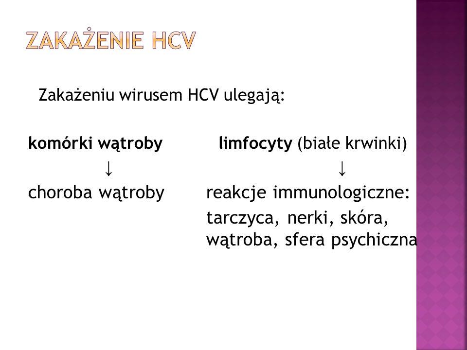 Zakażenie HCV choroba wątroby reakcje immunologiczne:
