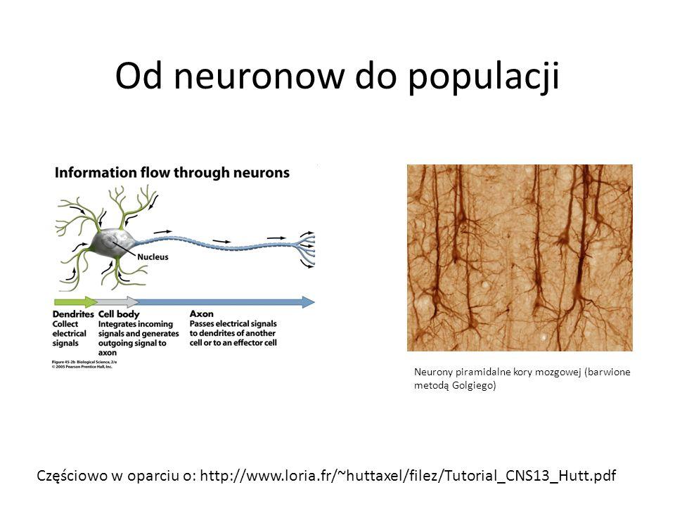 Od neuronow do populacji