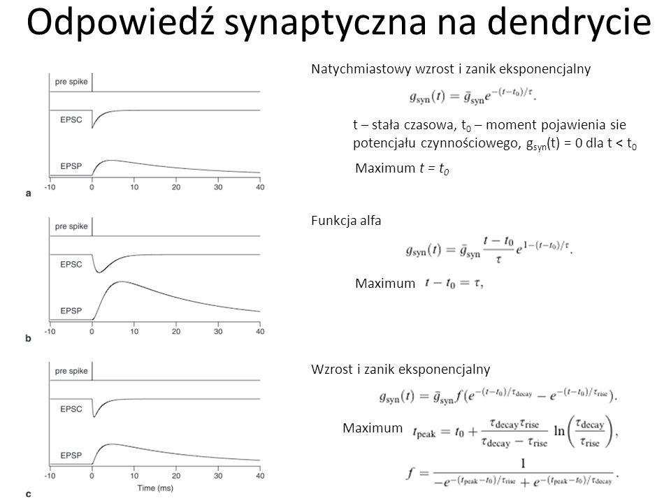 Odpowiedź synaptyczna na dendrycie