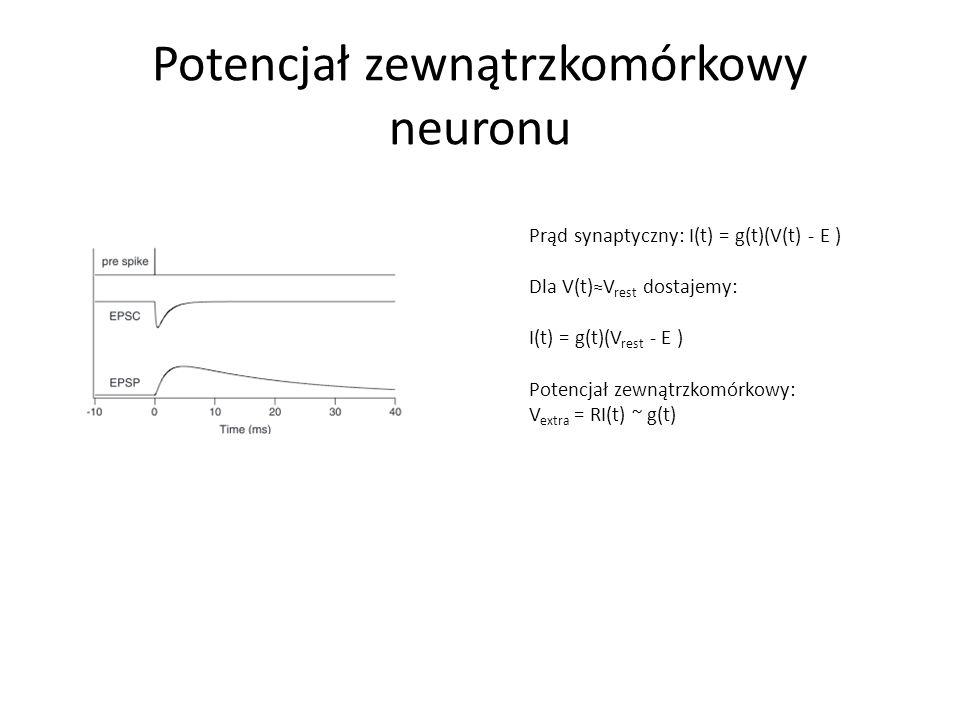 Potencjał zewnątrzkomórkowy neuronu