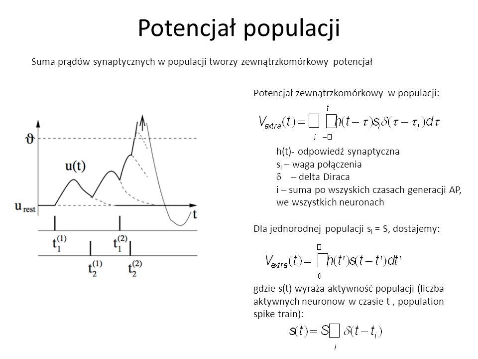 Potencjał populacji Suma prądów synaptycznych w populacji tworzy zewnątrzkomórkowy potencjał. Potencjał zewnątrzkomórkowy w populacji: