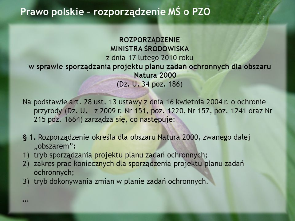Prawo polskie – rozporządzenie MŚ o PZO