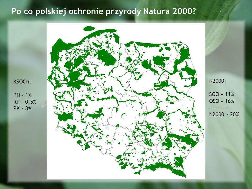 Po co polskiej ochronie przyrody Natura 2000