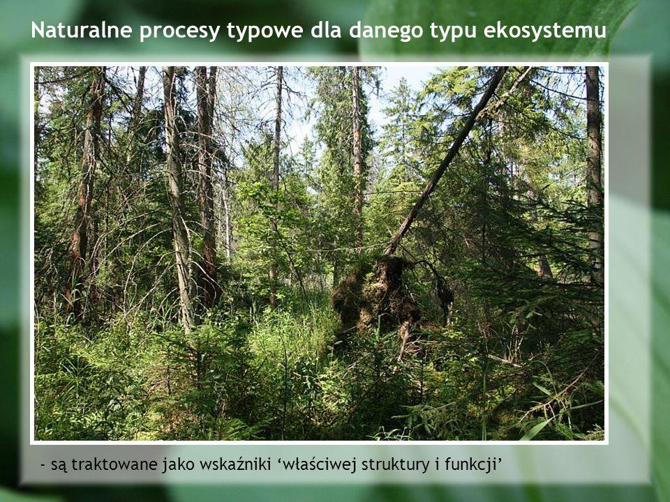 Naturalne procesy typowe dla danego typu ekosystemu