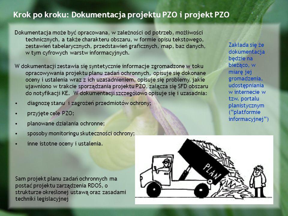 Krok po kroku: Dokumentacja projektu PZO i projekt PZO