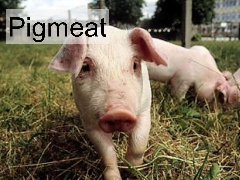 Pigmeat