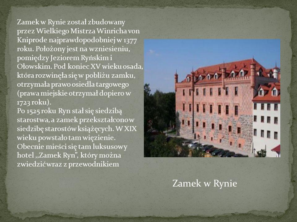 Zamek w Rynie został zbudowany przez Wielkiego Mistrza Winricha von Kniprode najprawdopodobniej w 1377 roku. Położony jest na wzniesieniu, pomiędzy Jeziorem Ryńskim i Ołowskim. Pod koniec XV wieku osada, która rozwinęła się w pobliżu zamku, otrzymała prawo osiedla targowego (prawa miejskie otrzymał dopiero w 1723 roku).