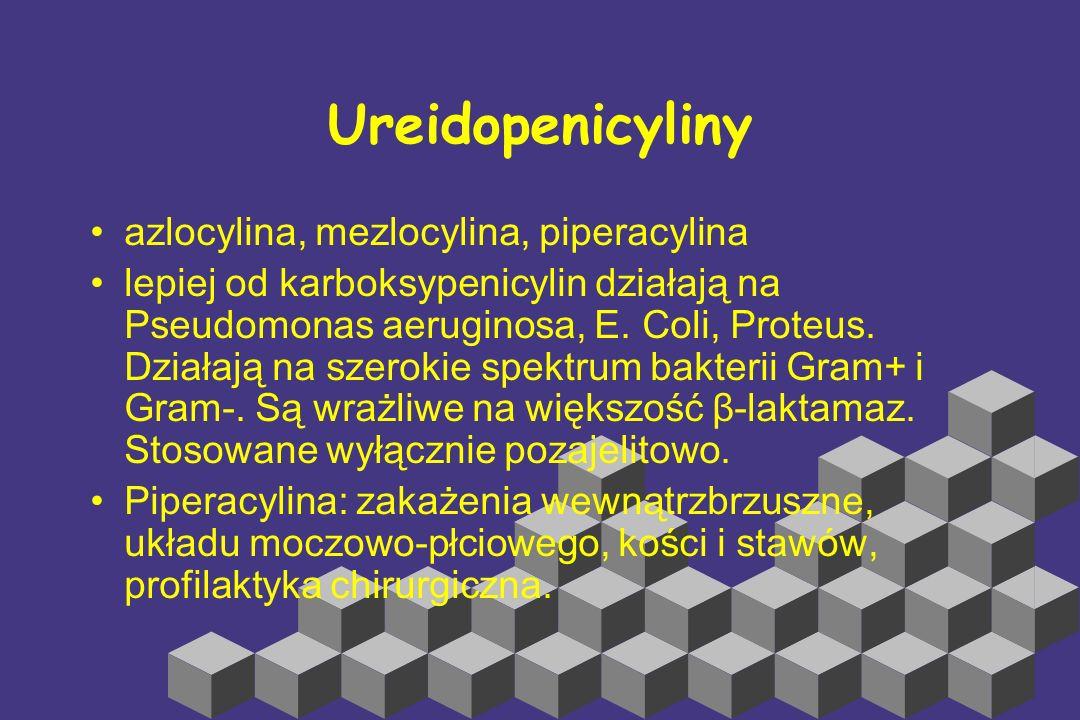 Ureidopenicyliny azlocylina, mezlocylina, piperacylina