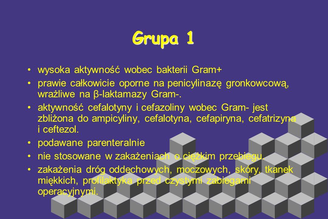 Grupa 1 wysoka aktywność wobec bakterii Gram+