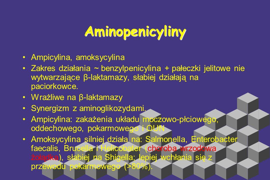 Aminopenicyliny Ampicylina, amoksycylina