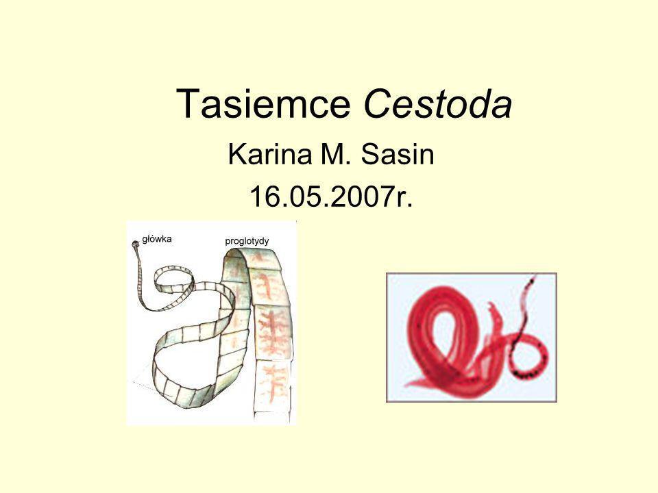 Tasiemce Cestoda Karina M. Sasin 16.05.2007r.