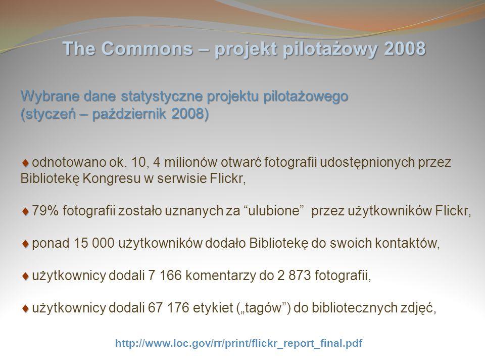 The Commons – projekt pilotażowy 2008