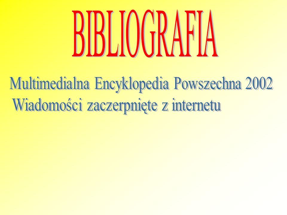 Multimedialna Encyklopedia Powszechna 2002