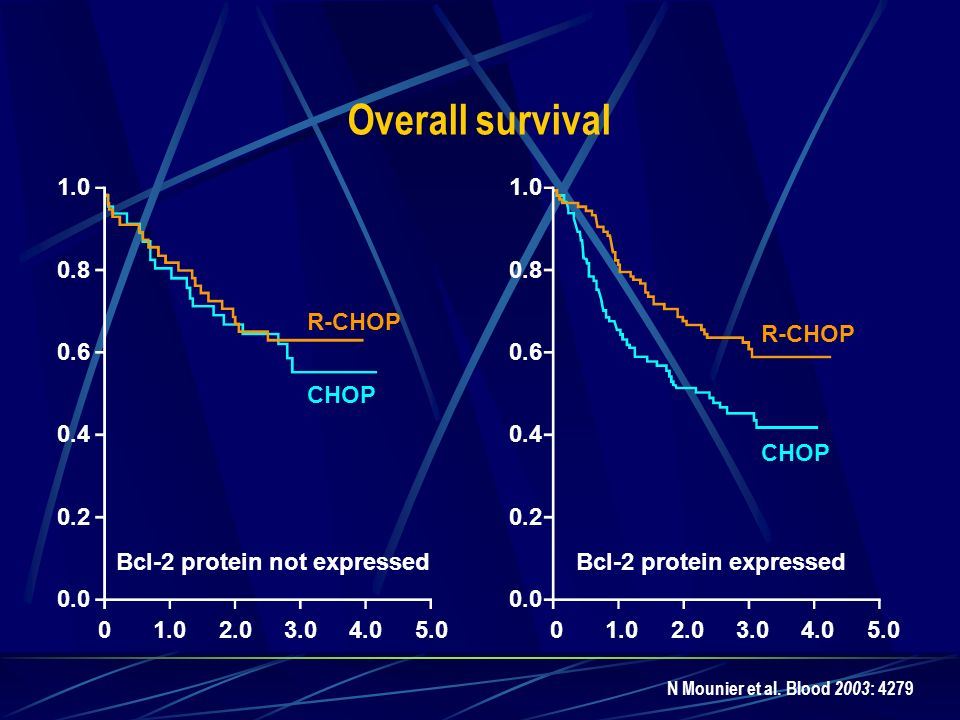 Bcl-2 protein not expressed Bcl-2 protein expressed