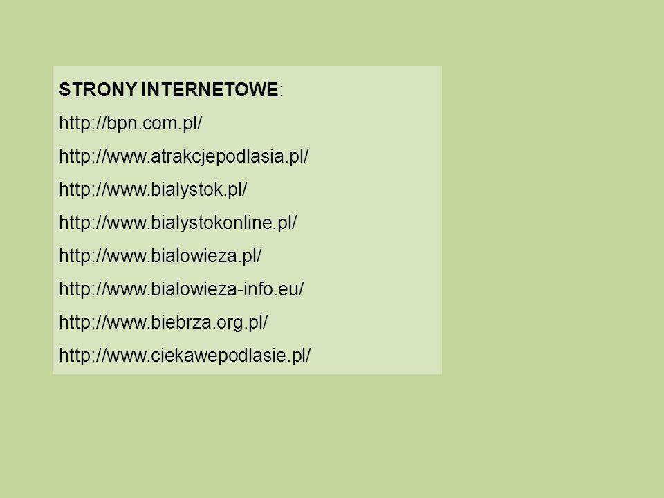 STRONY INTERNETOWE: http://bpn.com.pl/ http://www.atrakcjepodlasia.pl/ http://www.bialystok.pl/ http://www.bialystokonline.pl/