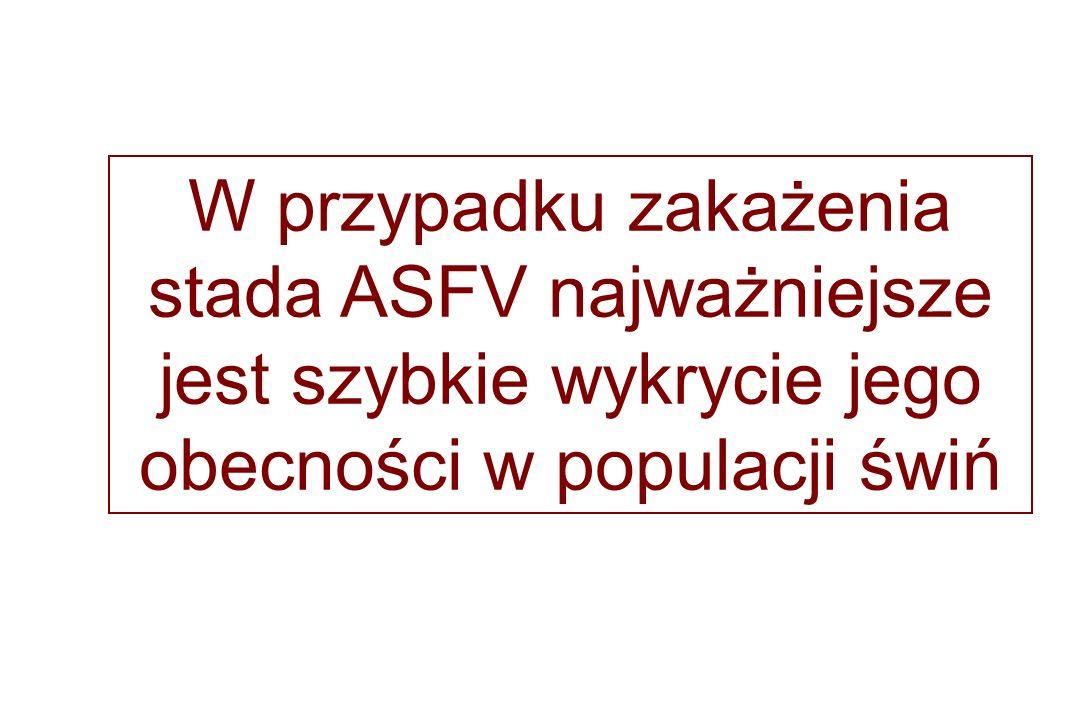 W przypadku zakażenia stada ASFV najważniejsze jest szybkie wykrycie jego obecności w populacji świń