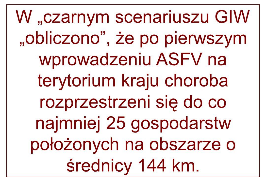 """W """"czarnym scenariuszu GIW """"obliczono , że po pierwszym wprowadzeniu ASFV na terytorium kraju choroba rozprzestrzeni się do co najmniej 25 gospodarstw położonych na obszarze o średnicy 144 km."""