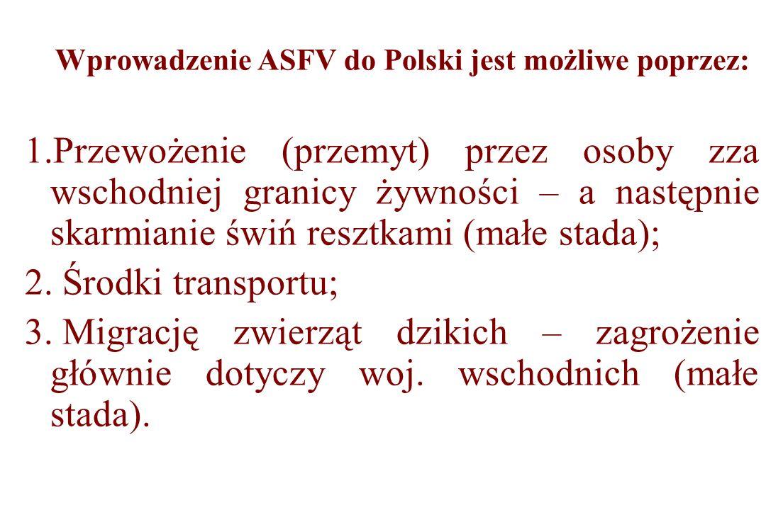 Wprowadzenie ASFV do Polski jest możliwe poprzez: