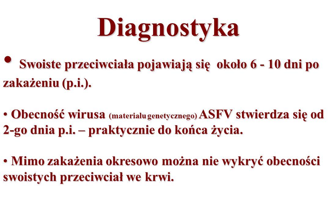 Diagnostyka Swoiste przeciwciała pojawiają się około 6 - 10 dni po zakażeniu (p.i.).