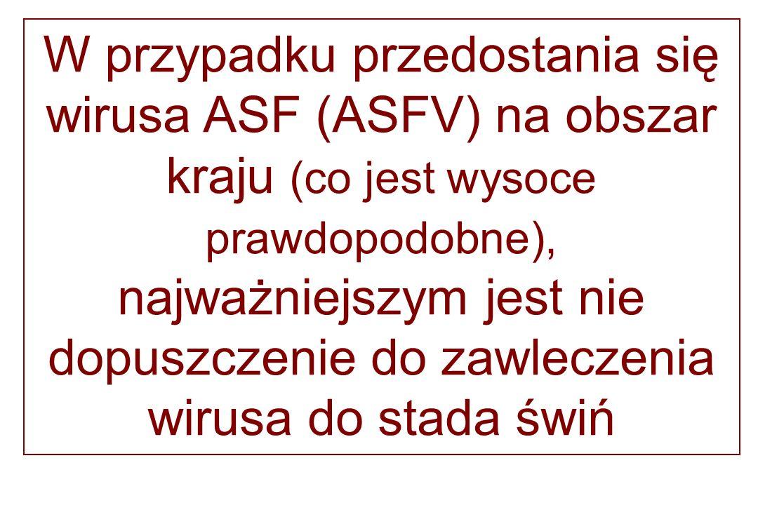 W przypadku przedostania się wirusa ASF (ASFV) na obszar kraju (co jest wysoce prawdopodobne), najważniejszym jest nie dopuszczenie do zawleczenia wirusa do stada świń