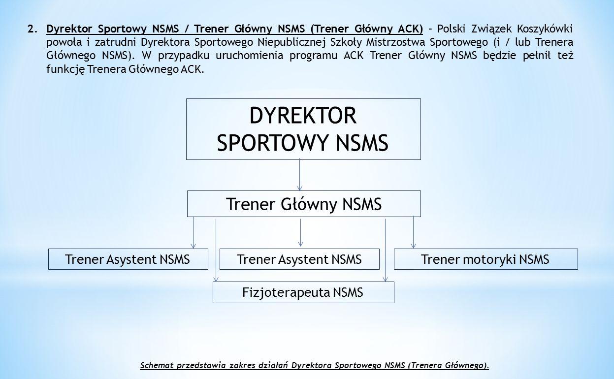 DYREKTOR SPORTOWY NSMS
