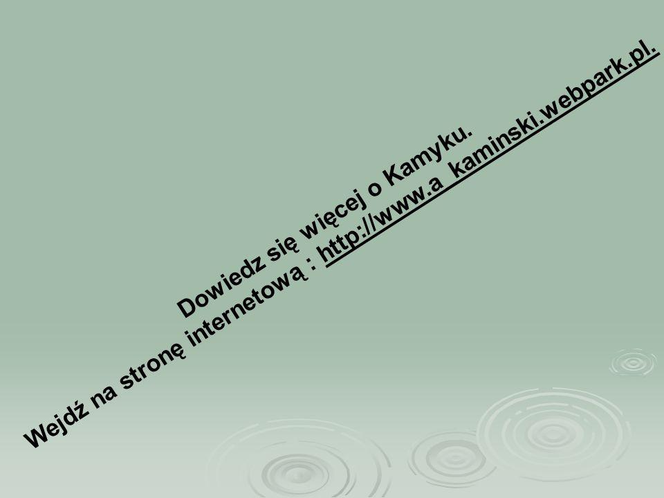 Wejdź na stronę internetową : http://www.a_kaminski.webpark.pl.