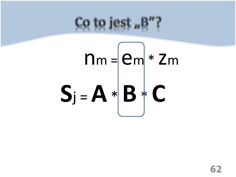 "Co to jest ""B nm = em * zm Sj = A * B * C"
