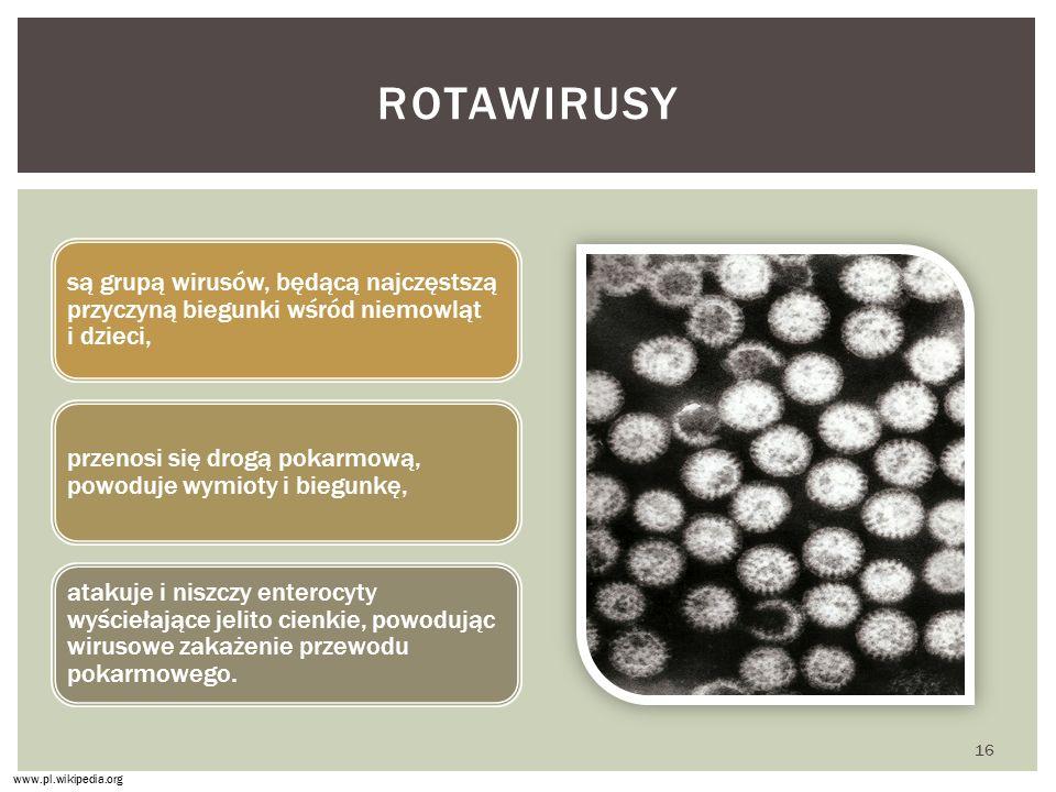 rotawirusy są grupą wirusów, będącą najczęstszą przyczyną biegunki wśród niemowląt i dzieci,