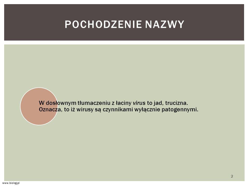 Pochodzenie nazwy W dosłownym tłumaczeniu z łaciny virus to jad, trucizna. Oznacza, to iż wirusy są czynnikami wyłącznie patogennymi.
