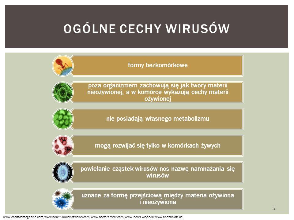 Ogólne cechy wirusów formy bezkomórkowe