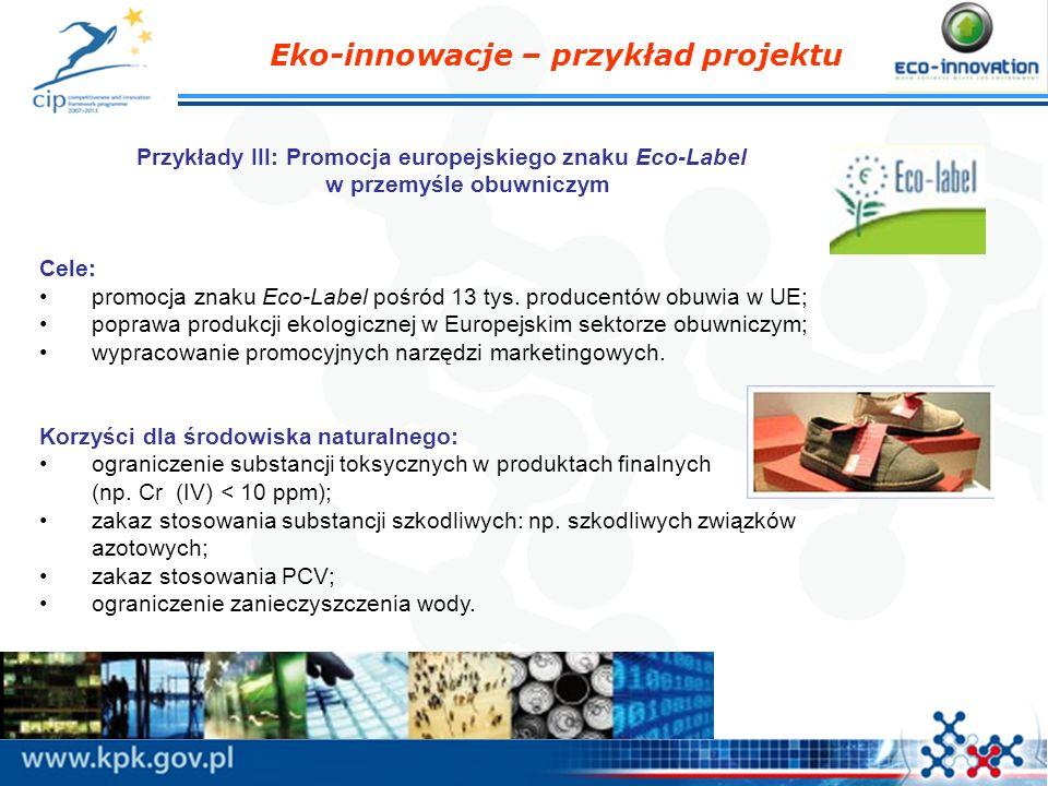 Eko-innowacje – przykład projektu